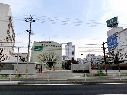 住友 製薬 日本 大